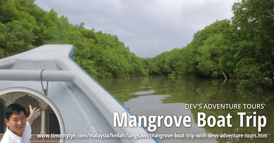 Dev's Adventure Tours' Mangrove Boat Trip